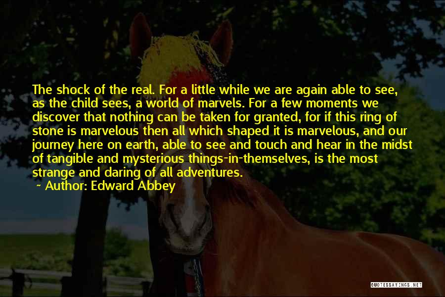 The Stone Child Quotes By Edward Abbey