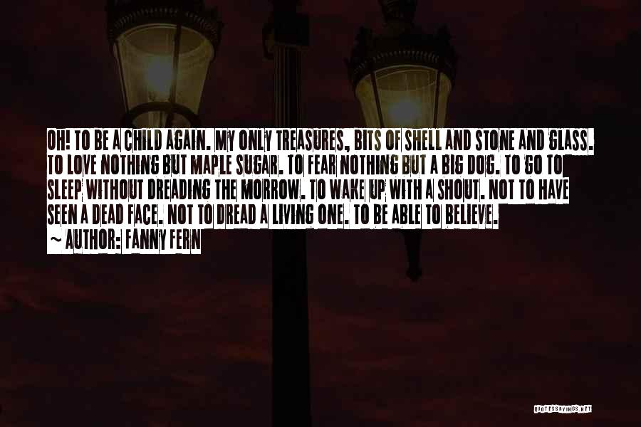 The Stone Child Quotes By Fanny Fern