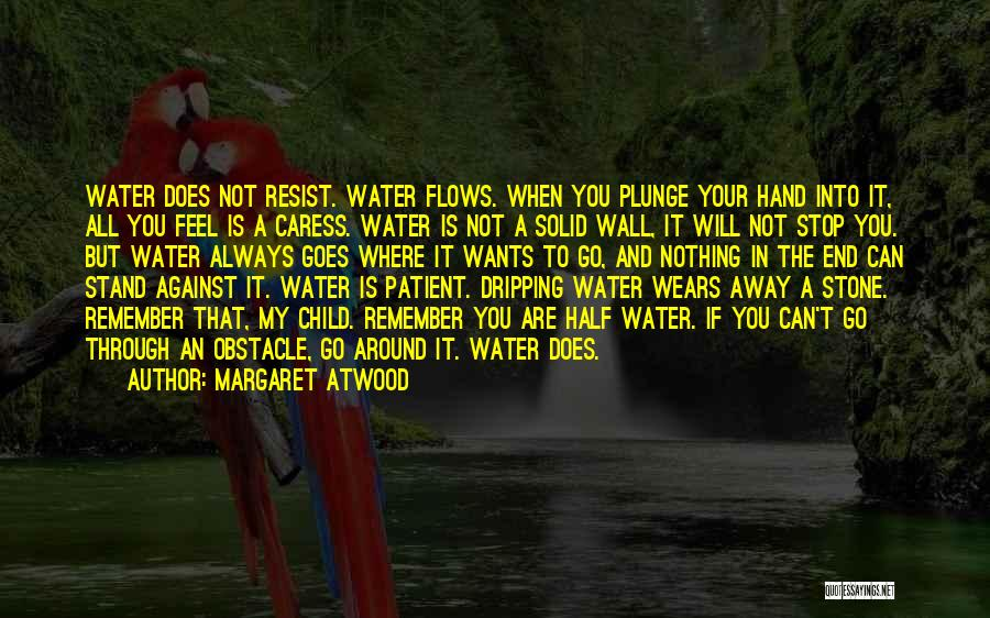 The Stone Child Quotes By Margaret Atwood