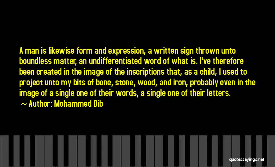 The Stone Child Quotes By Mohammed Dib