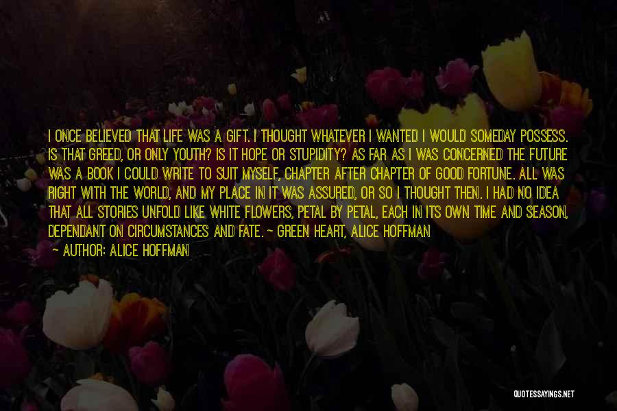 The Stupidity Of Youth Quotes By Alice Hoffman