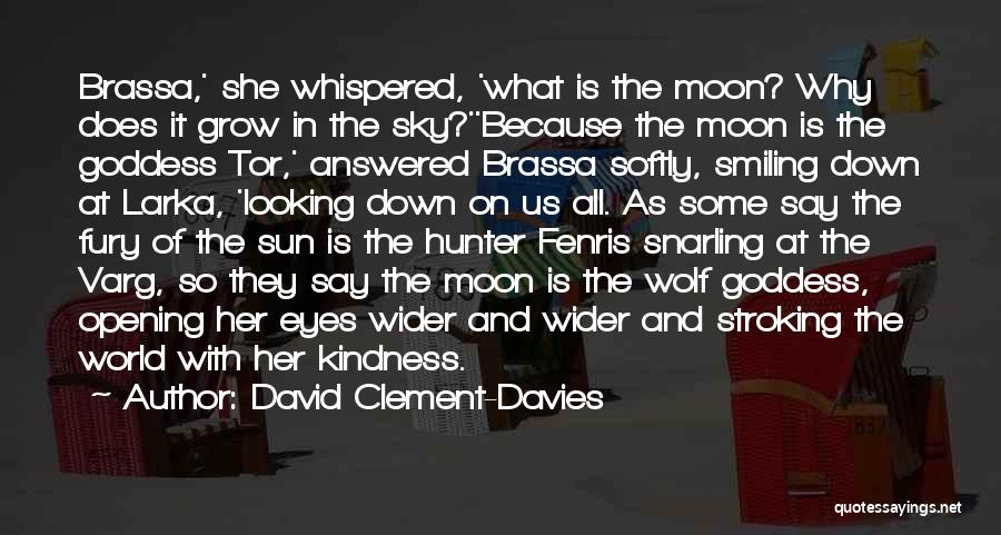 The Sun And Moon Quotes By David Clement-Davies