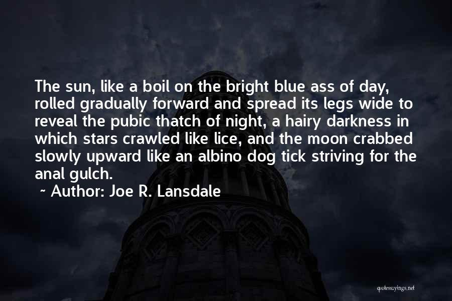 The Sun And Moon Quotes By Joe R. Lansdale