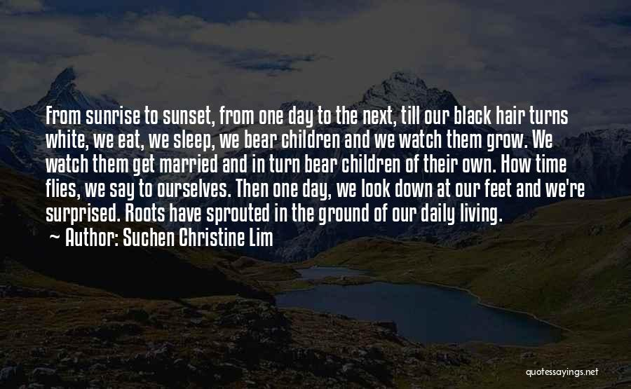 The Sunset And Sunrise Quotes By Suchen Christine Lim