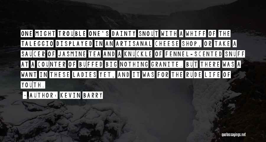 The Trouble With Youth Quotes By Kevin Barry