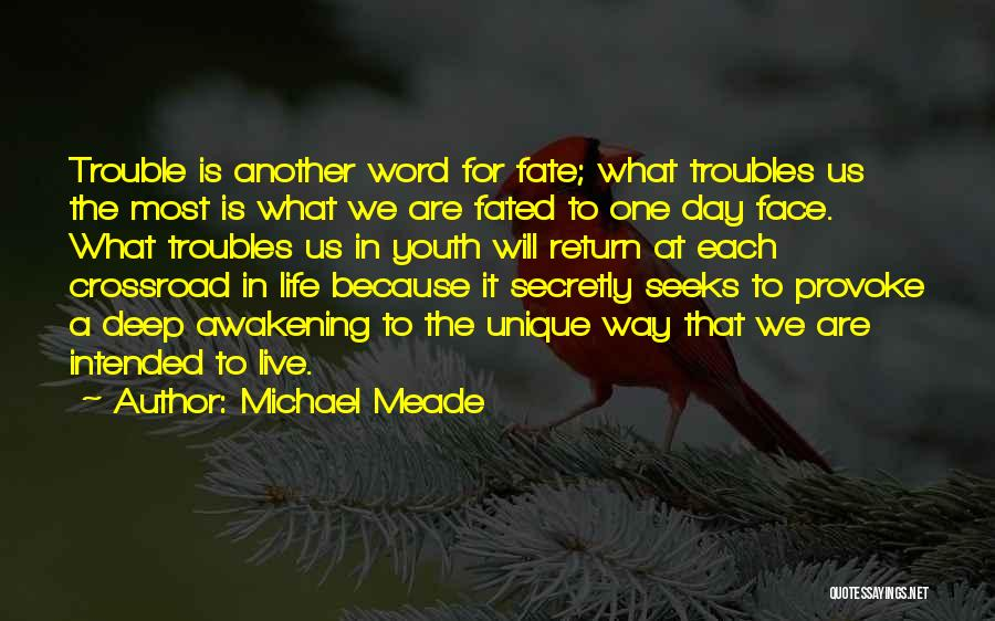 The Trouble With Youth Quotes By Michael Meade