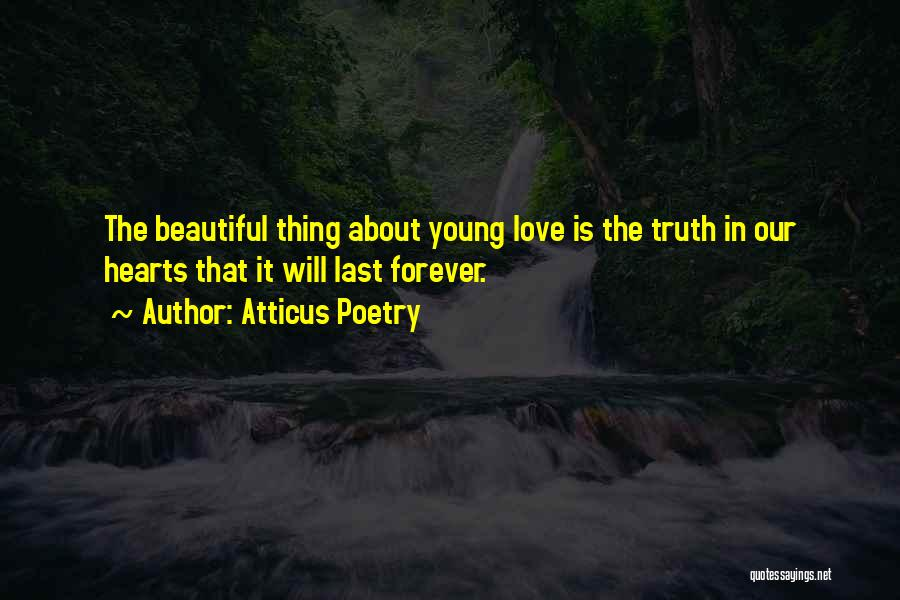 The Truth About Forever Quotes By Atticus Poetry