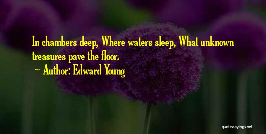 The Unknown Ocean Quotes By Edward Young
