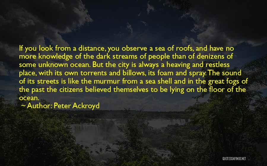 The Unknown Ocean Quotes By Peter Ackroyd
