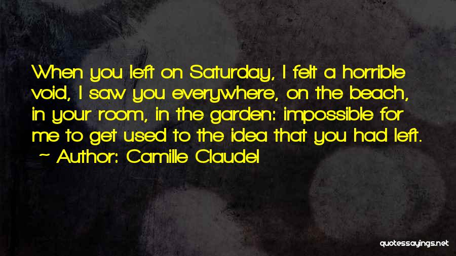 The Void Quotes By Camille Claudel