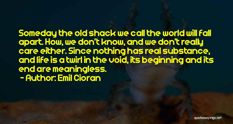 The Void Quotes By Emil Cioran