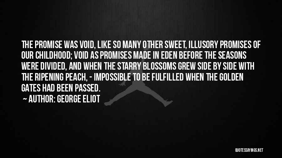 The Void Quotes By George Eliot