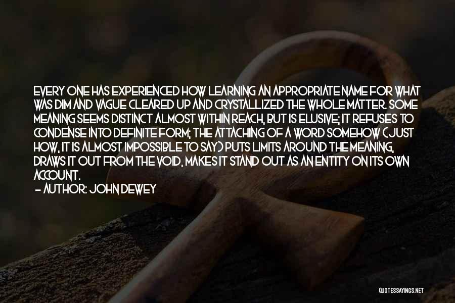 The Void Quotes By John Dewey