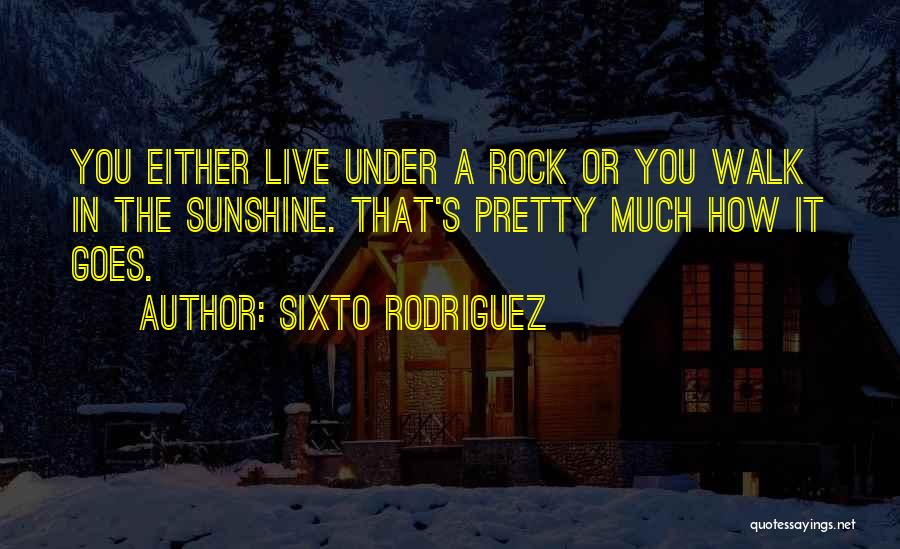 The Way She Walks Quotes By Sixto Rodriguez