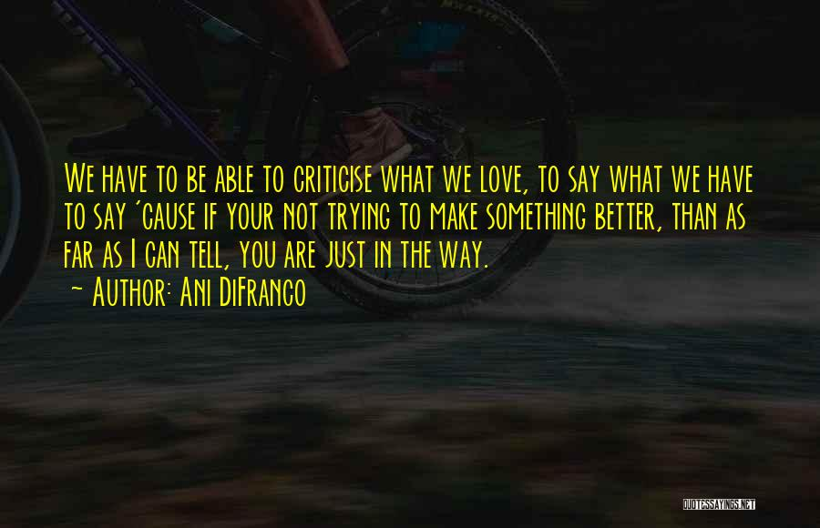The Way We Make Love Quotes By Ani DiFranco