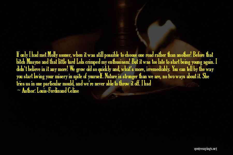 The Way We Met Quotes By Louis-Ferdinand Celine