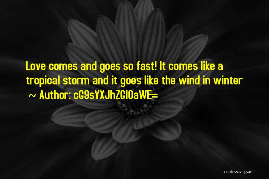 The Wind And Love Quotes By CG9sYXJhZGl0aWE=