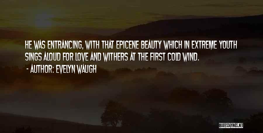 The Wind And Love Quotes By Evelyn Waugh