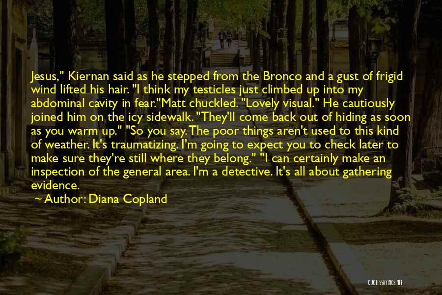 The Wind In My Hair Quotes By Diana Copland