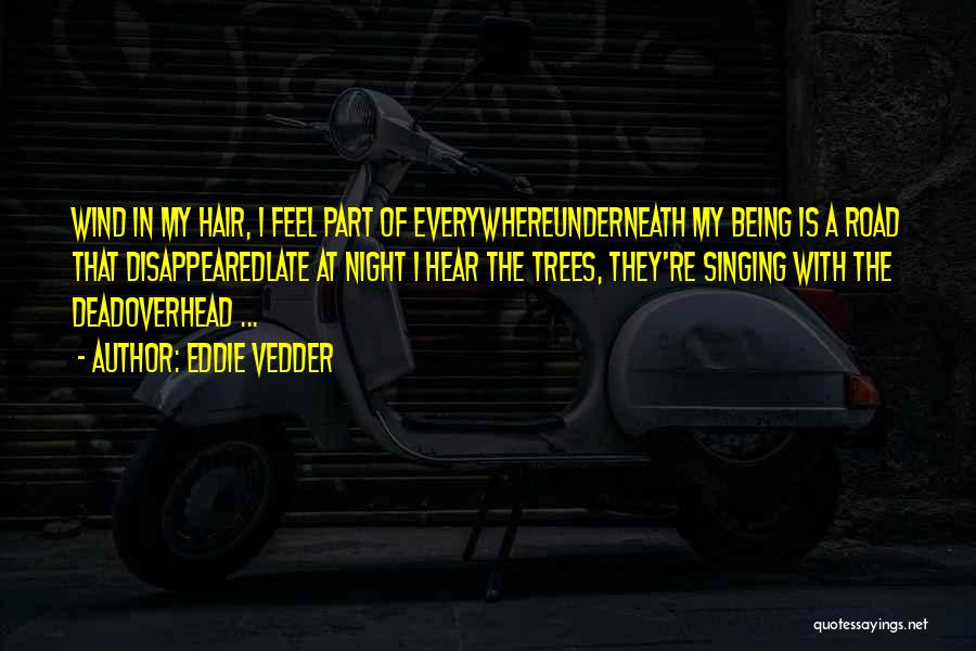 The Wind In My Hair Quotes By Eddie Vedder