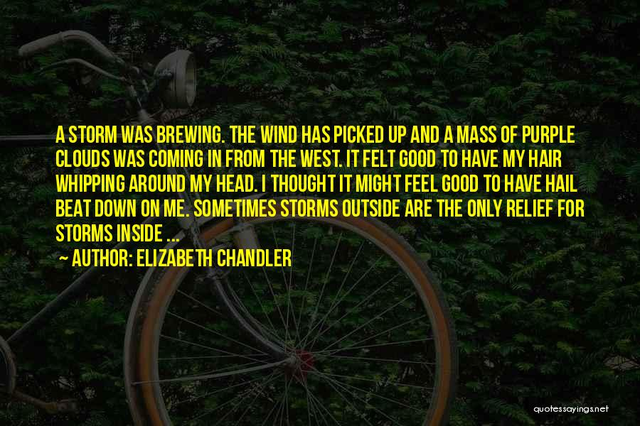 The Wind In My Hair Quotes By Elizabeth Chandler