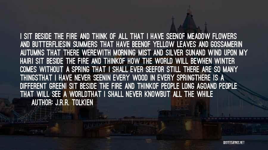 The Wind In My Hair Quotes By J.R.R. Tolkien