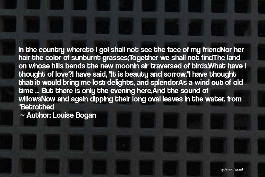 The Wind In My Hair Quotes By Louise Bogan