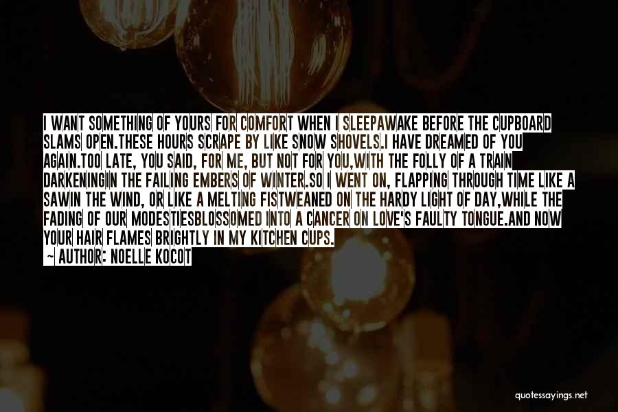 The Wind In My Hair Quotes By Noelle Kocot