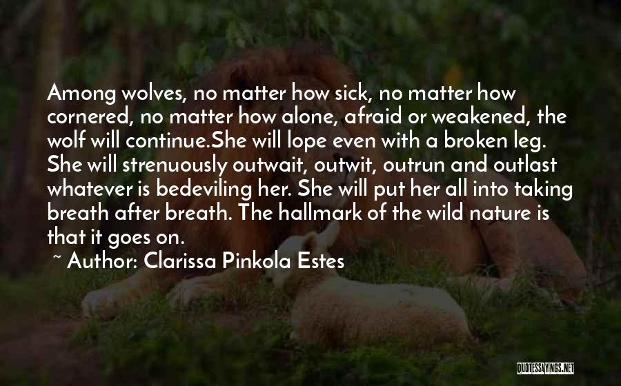 The Wolf Among Us Quotes By Clarissa Pinkola Estes