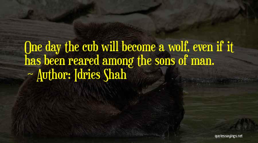 The Wolf Among Us Quotes By Idries Shah