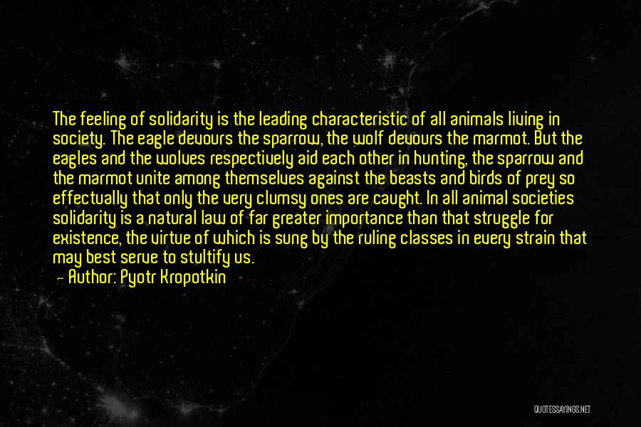 The Wolf Among Us Quotes By Pyotr Kropotkin