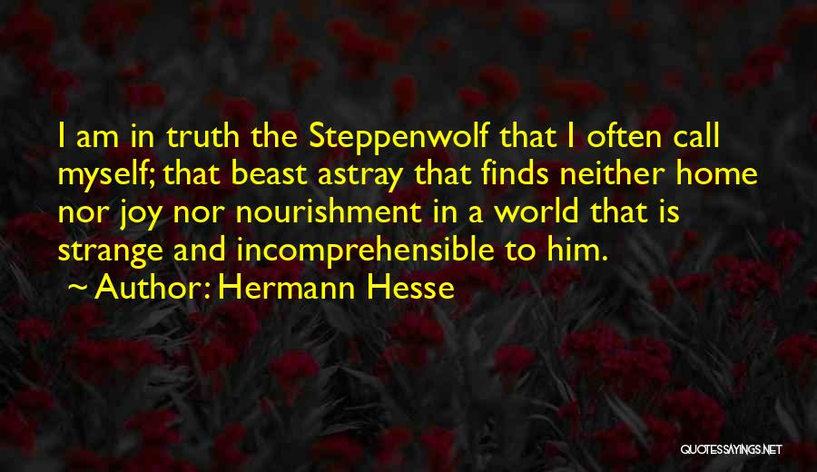 The World And Home Quotes By Hermann Hesse