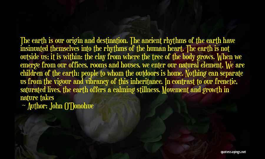 The World And Home Quotes By John O'Donohue