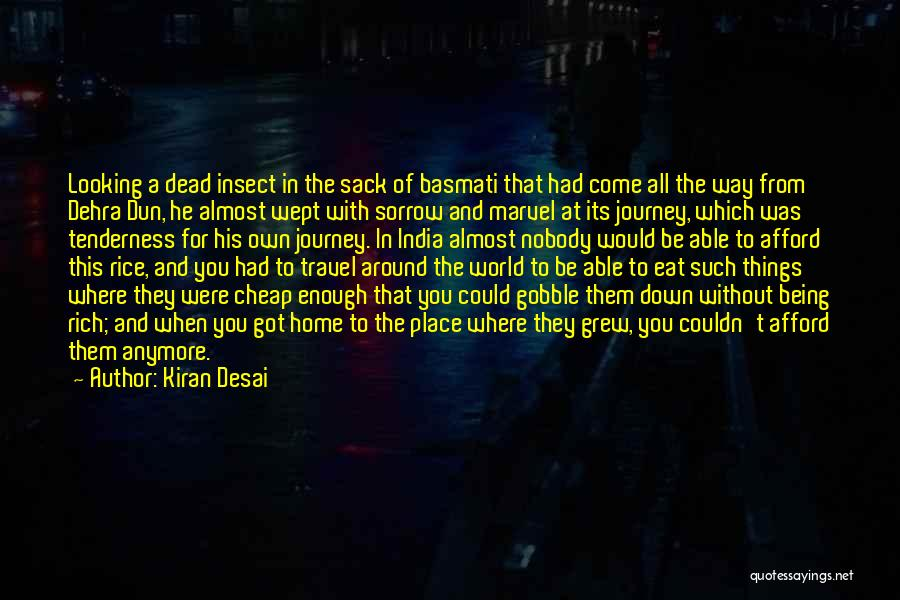 The World And Home Quotes By Kiran Desai