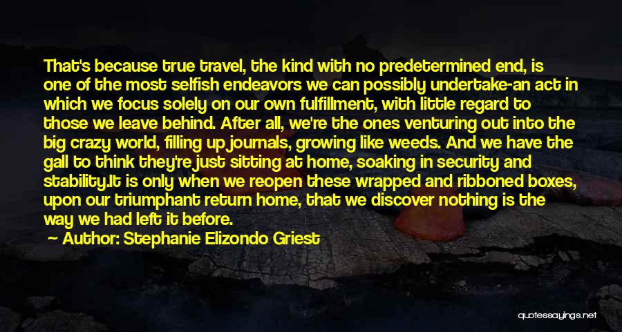 The World And Home Quotes By Stephanie Elizondo Griest