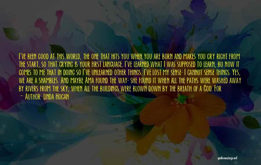 The World Makes No Sense Quotes By Linda Hogan