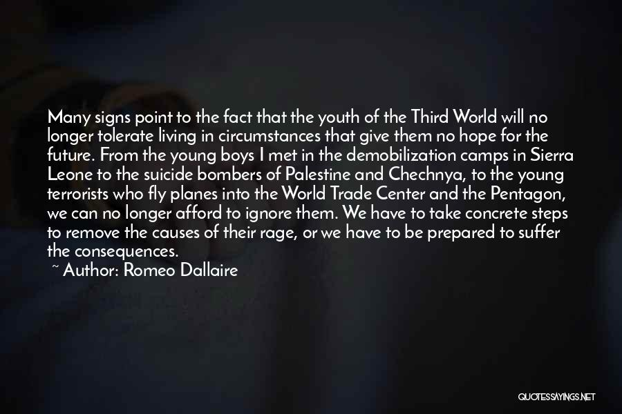 The World Trade Center Quotes By Romeo Dallaire
