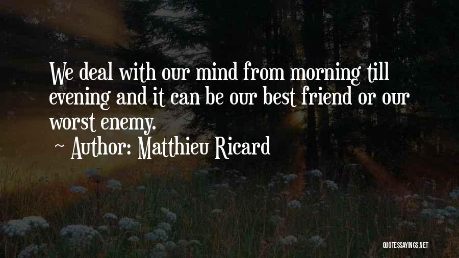 The Worst Enemy Is The Best Friend Quotes By Matthieu Ricard