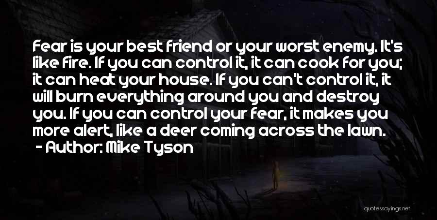 The Worst Enemy Is The Best Friend Quotes By Mike Tyson