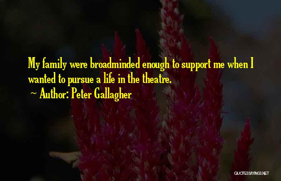 Theatre Family Quotes By Peter Gallagher