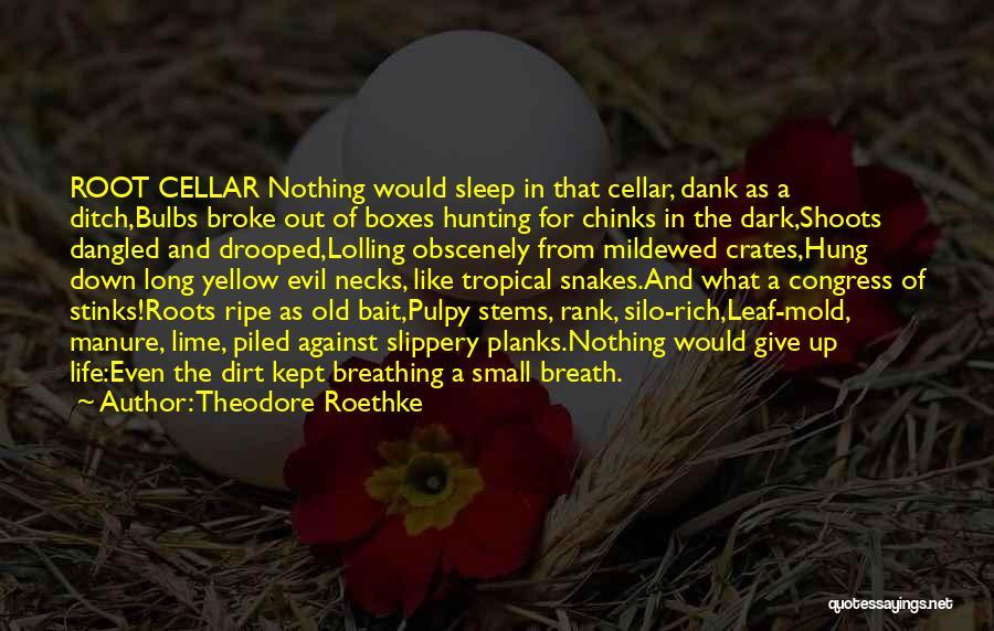 Theodore Roethke Quotes 1037951