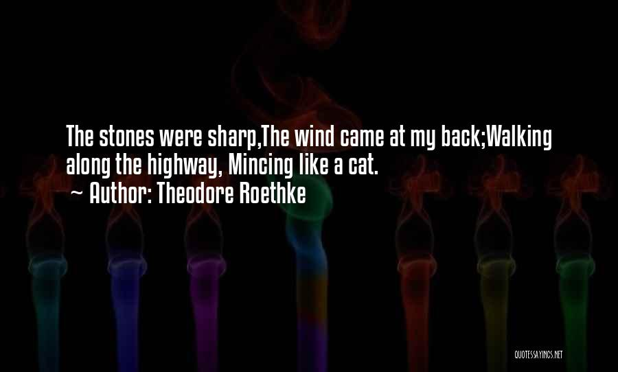 Theodore Roethke Quotes 1304668