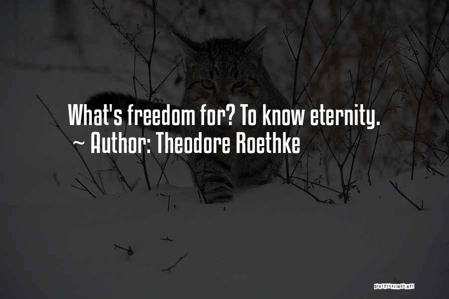 Theodore Roethke Quotes 1354806