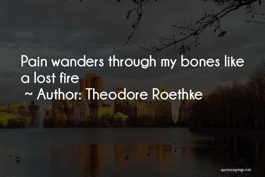 Theodore Roethke Quotes 1360510