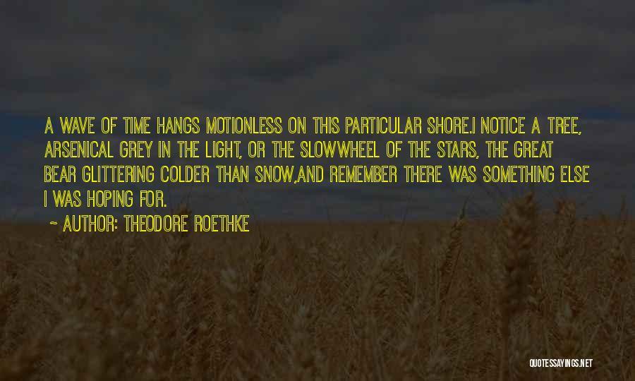 Theodore Roethke Quotes 1367049
