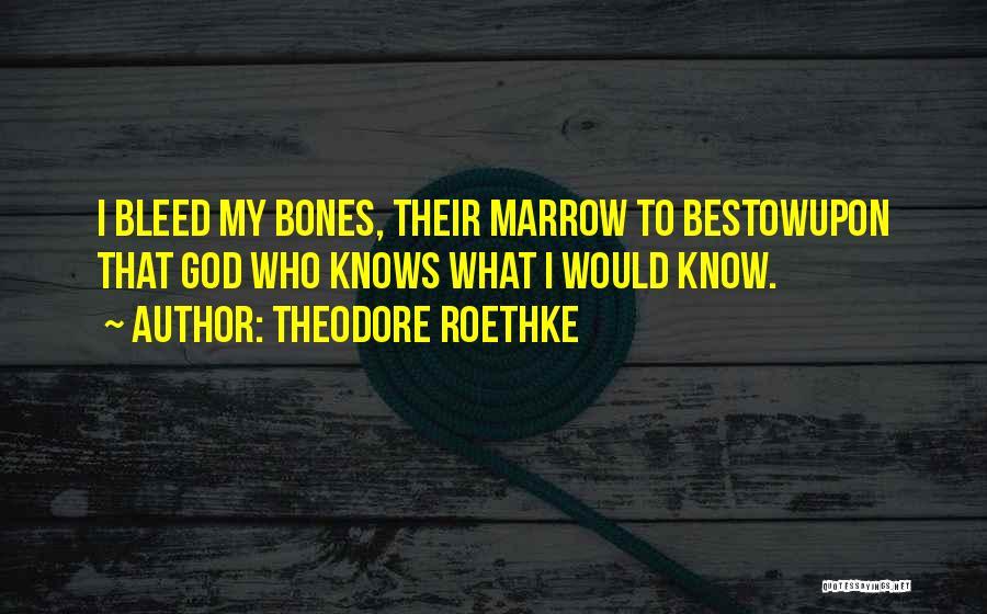 Theodore Roethke Quotes 1446279