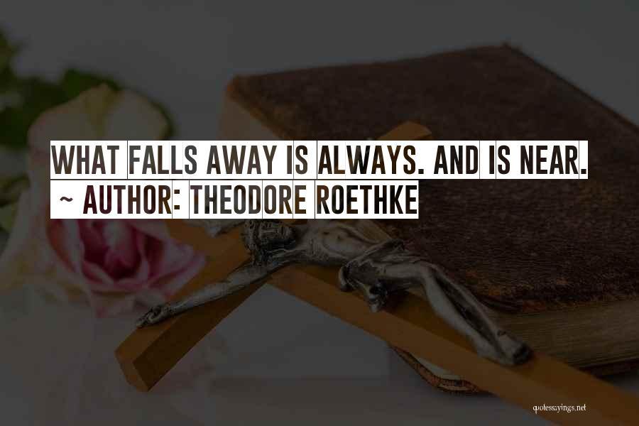 Theodore Roethke Quotes 1493962