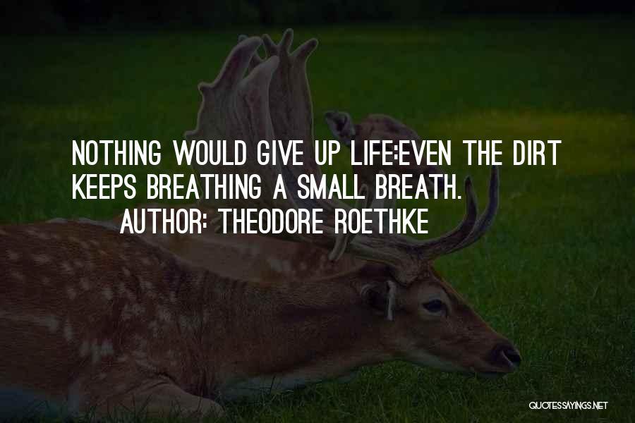Theodore Roethke Quotes 1598400