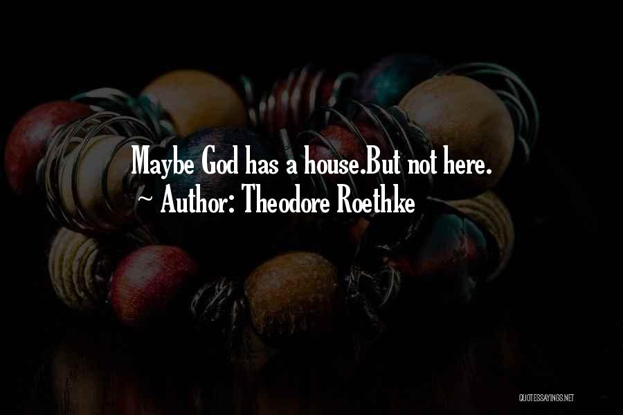 Theodore Roethke Quotes 1638678