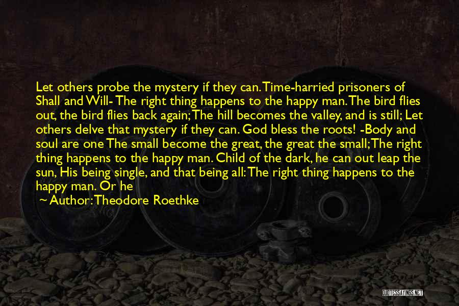 Theodore Roethke Quotes 1748109